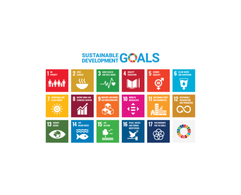UN Sustainable Development Goals Poster